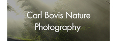 Carl Bovis Nature Photography